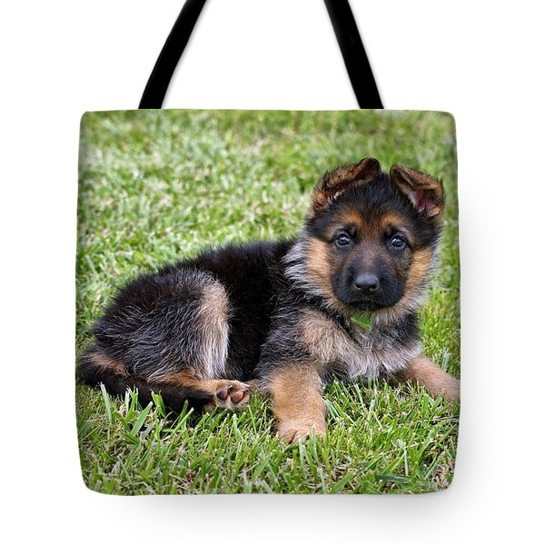 Puppy in the Spring Tote Bag by Sandy Keeton
