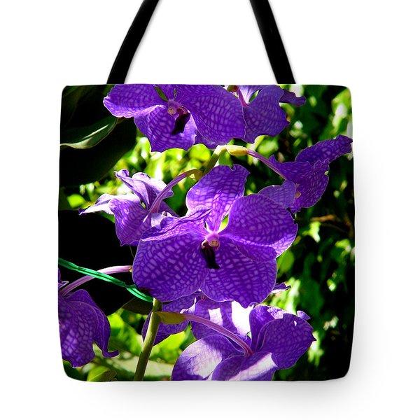 Purple Orchids Tote Bag by Susanne Van Hulst