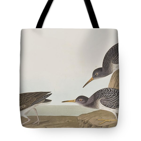 Purple Sandpiper Tote Bag by John James Audubon