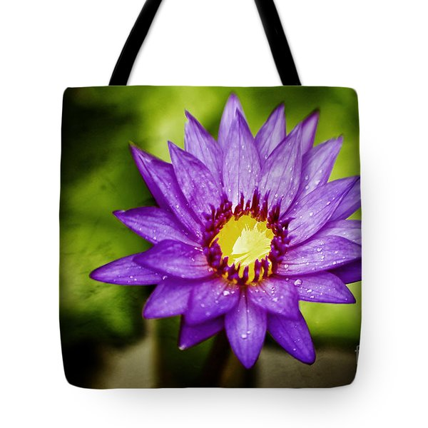 Purple Sunrise Tote Bag by Scott Pellegrin