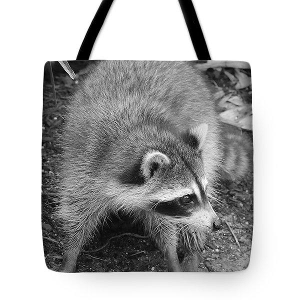 Raccoon - Black And White Tote Bag by Carol Groenen