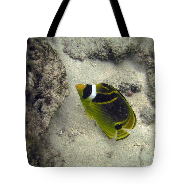 Raccoon Butterflyfish Tote Bag by Michael Peychich