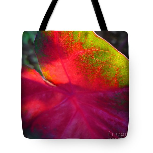 Rainbow Coleus 2 Tote Bag by Jeff Breiman