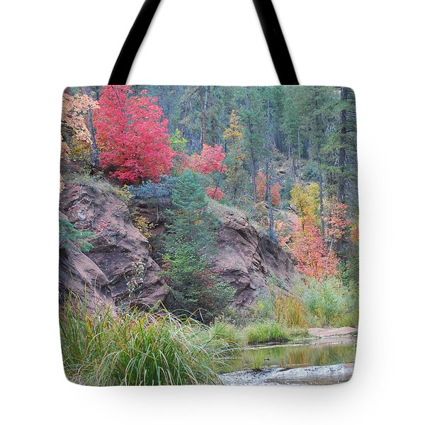 Rainbow Of The Season With River Tote Bag by Heather Kirk