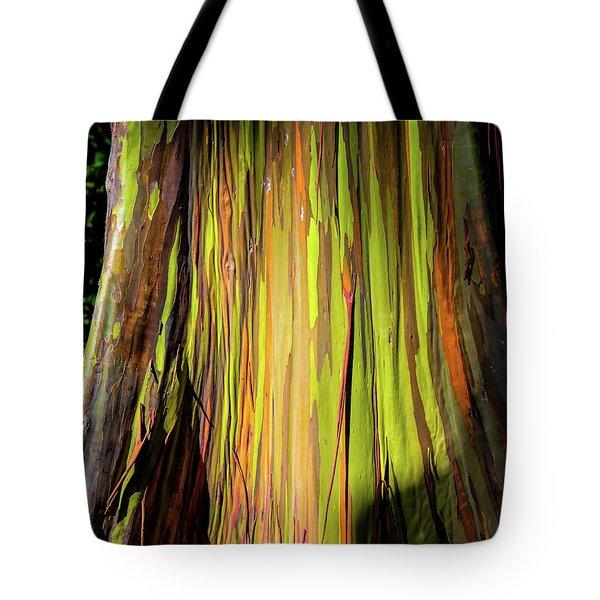 Rainbow Tree Tote Bag by Jon Burch Photography