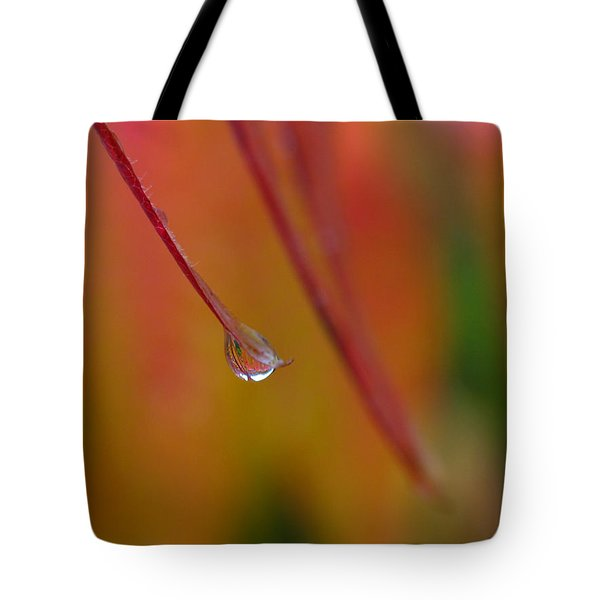Raindrop Tote Bag by Juergen Roth