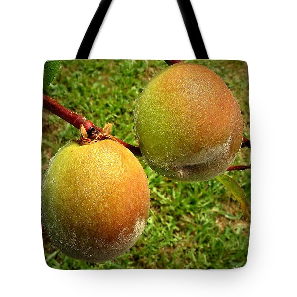 Rainy Day Peaches Tote Bag by Joyce Dickens