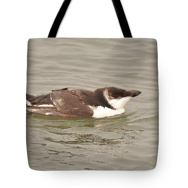Razorbill Tote Bag by Alan Lenk