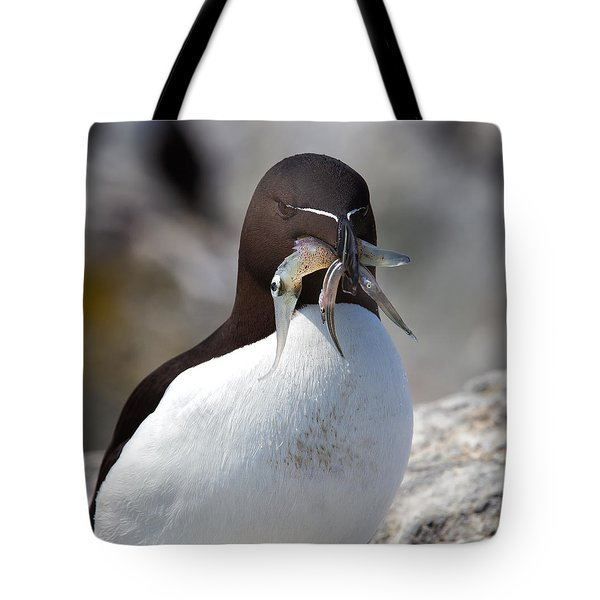 Razorbill With Catch Tote Bag by Mike Dodak