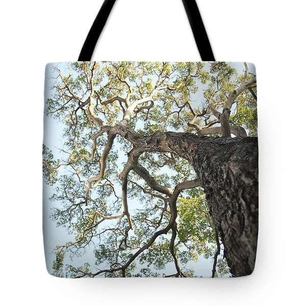 Reaching for the Sky Tote Bag by Brandon Tabiolo - Printscapes