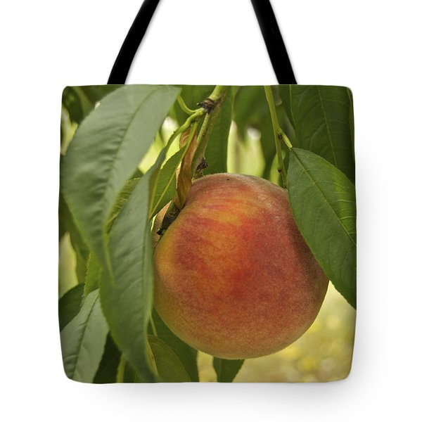 Ready For Picking 2904 Tote Bag by Michael Peychich