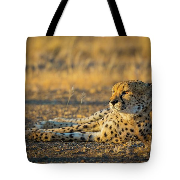 Reclining Cheetah Tote Bag by Inge Johnsson