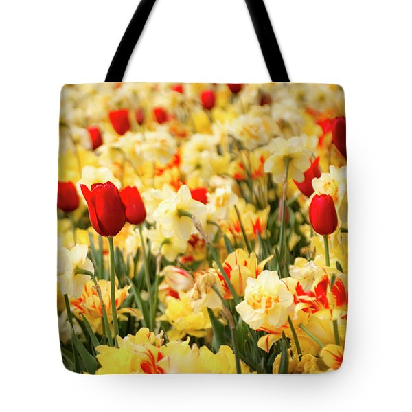 Red And Yellow Tote Bag by Tamyra Ayles
