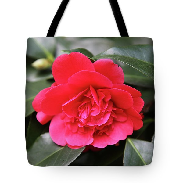 Red Camellia Tote Bag by Dean  Triolo