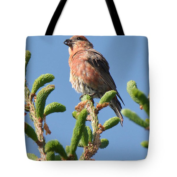 Red Crossbill Tote Bag by Alan Lenk
