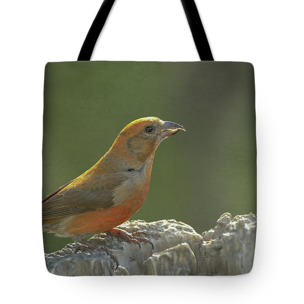 Red Crossbill Tote Bag by Constance Puttkemery