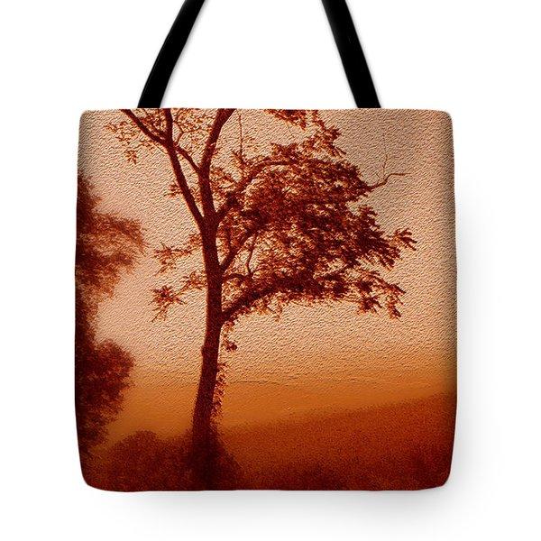 Red Dawn Tote Bag by Linda Sannuti