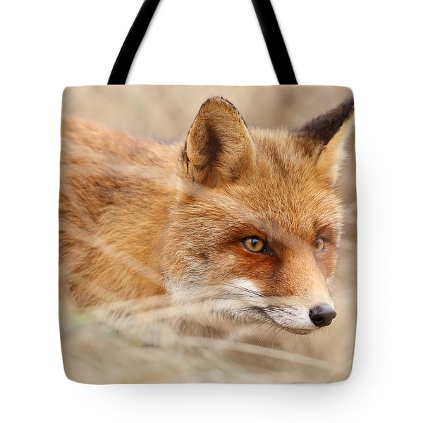 Red Fox On The Hunt Tote Bag by Roeselien Raimond
