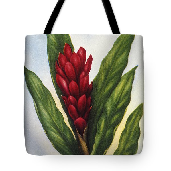 Red Ginger Tote Bag by Hawaiian Legacy Archive - Printscapes