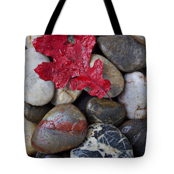 Red Leaf Wet Stones Tote Bag by Garry Gay