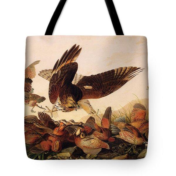 Red Shouldered Hawk Attacking Bobwhite Partridge Tote Bag by John James Audubon