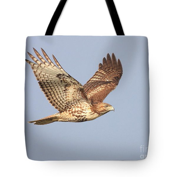 Red Tailed Hawk 20100101-1 Tote Bag by Wingsdomain Art and Photography