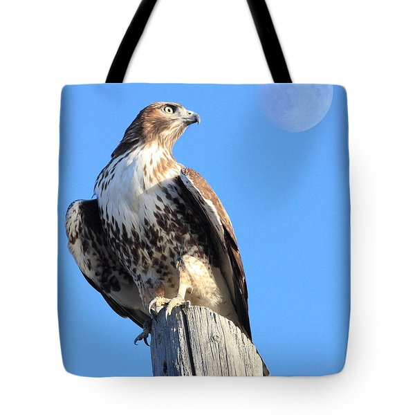 Red Tailed Hawk and Moon Tote Bag by Wingsdomain Art and Photography