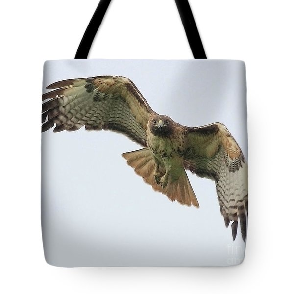 Red Tailed Hawk Finds Its Prey Tote Bag by Wingsdomain Art and Photography