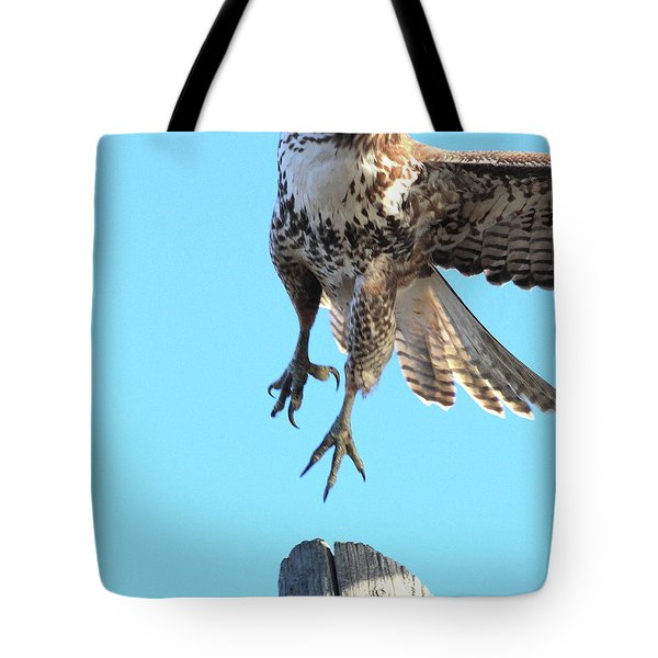 Red Tailed Hawk Taking Off . 40d10170 Tote Bag by Wingsdomain Art and Photography