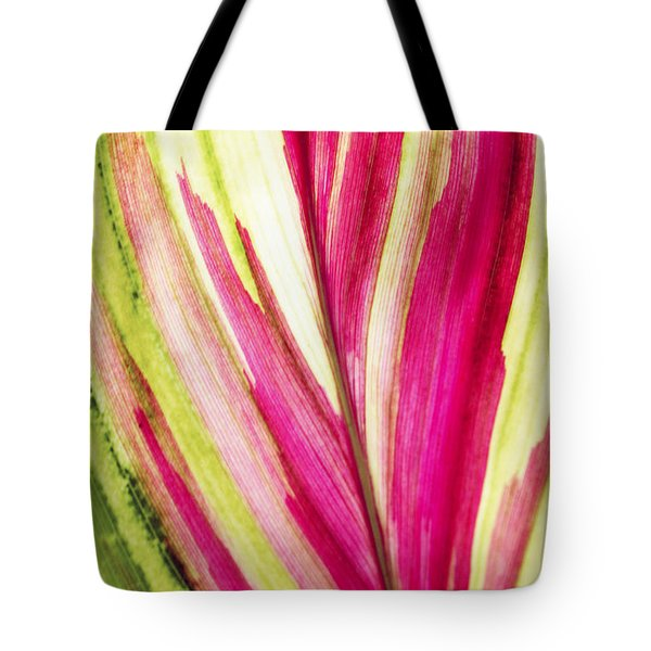 Red Ti Leaf Tote Bag by Brandon Tabiolo - Printscapes