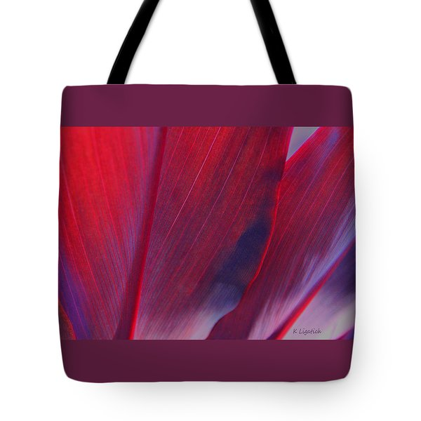 Red Ti Leaves At Last Light Tote Bag by Kerri Ligatich
