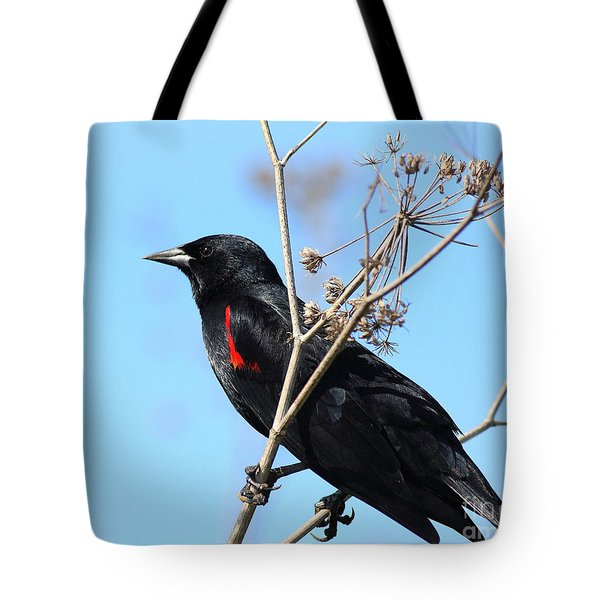 Red-winged Blackbird . 40d5718 Tote Bag by Wingsdomain Art and Photography