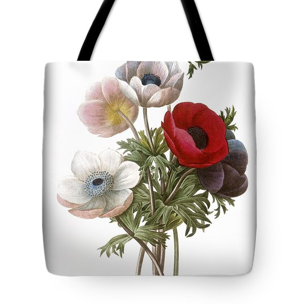 Redoute: Anemone, 1833 Tote Bag by Granger