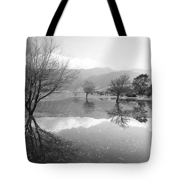 Reflected Trees Tote Bag by Gaspar Avila