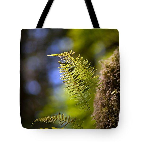 Renewal Ferns Tote Bag by Mike Reid