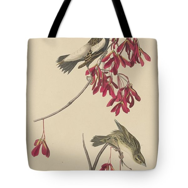 Rice Bunting Tote Bag by John James Audubon