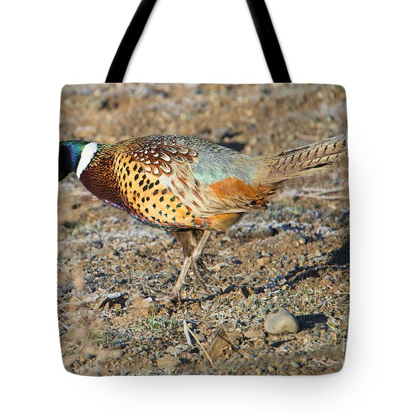 Ring-necked Pheasant Rooster Tote Bag by Mike Dawson