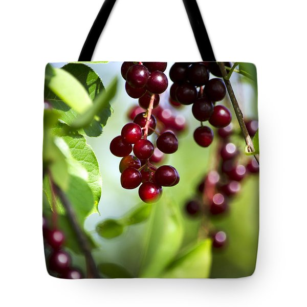 Ripe Red Cherries Jubilee Tote Bag by Christina Rollo