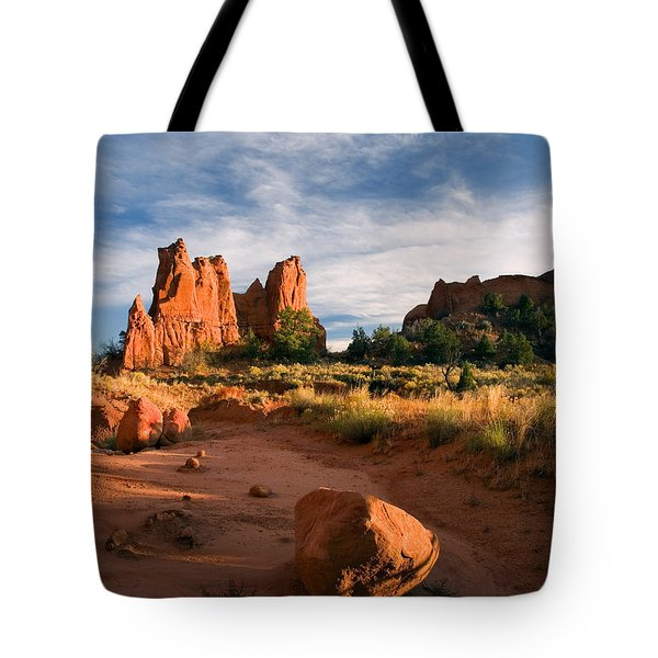 River Of Sand Tote Bag by Mike  Dawson