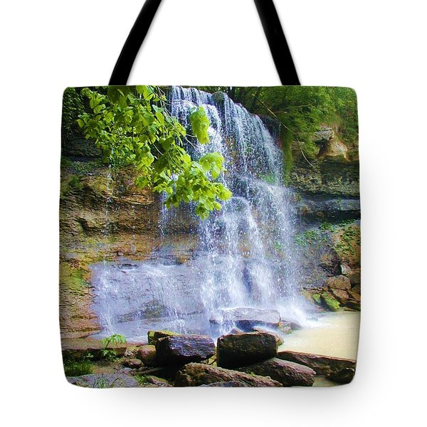 Tote Bag featuring the photograph Rock Glen by Rodney Campbell
