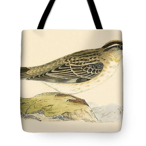 Rock Sparrow Tote Bag by English School