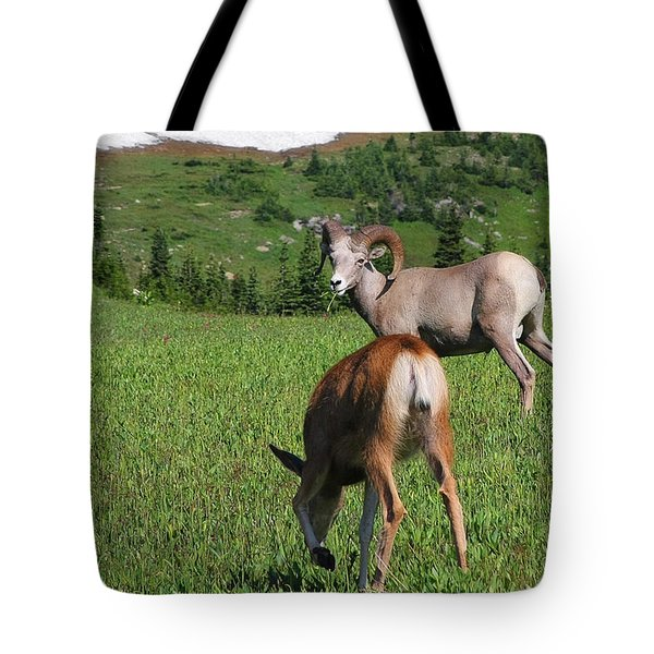 Rocky Mountain Bighorn Sheep Ram And Mule Deer Doe Glacier National Park Mt Tote Bag by Christine Till