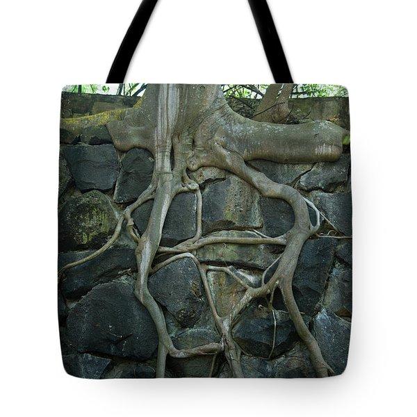 Roots and Rocks Tote Bag by Douglas Barnett