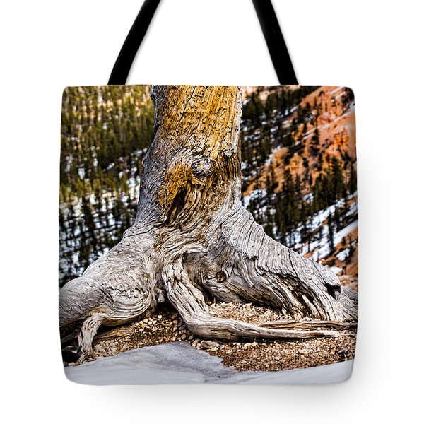 Roots Gripping The Edge Tote Bag by Christopher Holmes