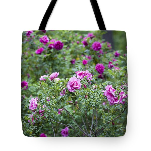 Rose Garden Tote Bag by Frank Tschakert