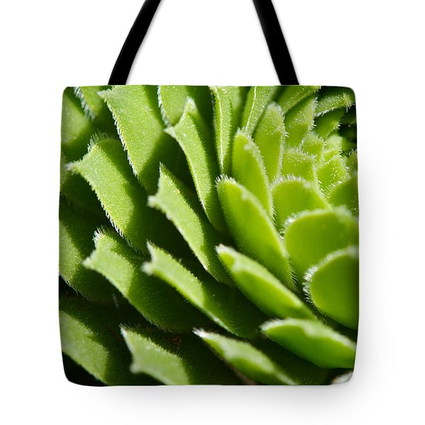 Rosette Tote Bag by Lisa Knechtel