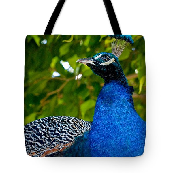 Royal Bird Tote Bag by Christopher Holmes
