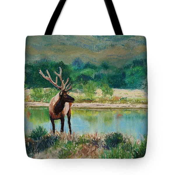 Royal Velvet Tote Bag by Mary Benke