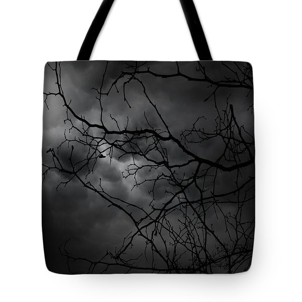 Ruler Of The Night Tote Bag by Lourry Legarde
