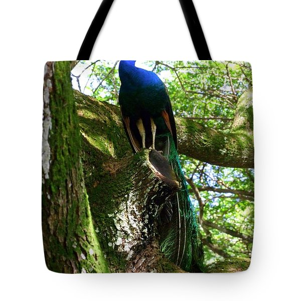 Ruler Of The Roost Tote Bag by Mary Deal